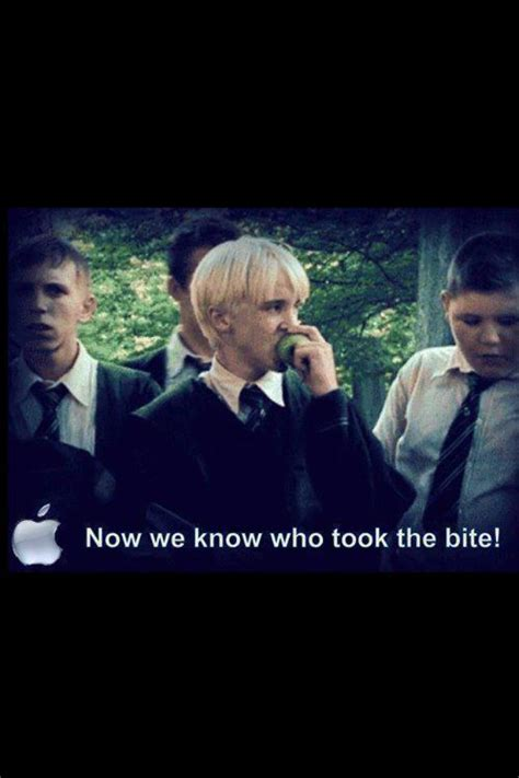 Draco Malfoy is the culprit!   Harry potter funny, Harry